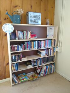 Old Fort Little Library Shelves